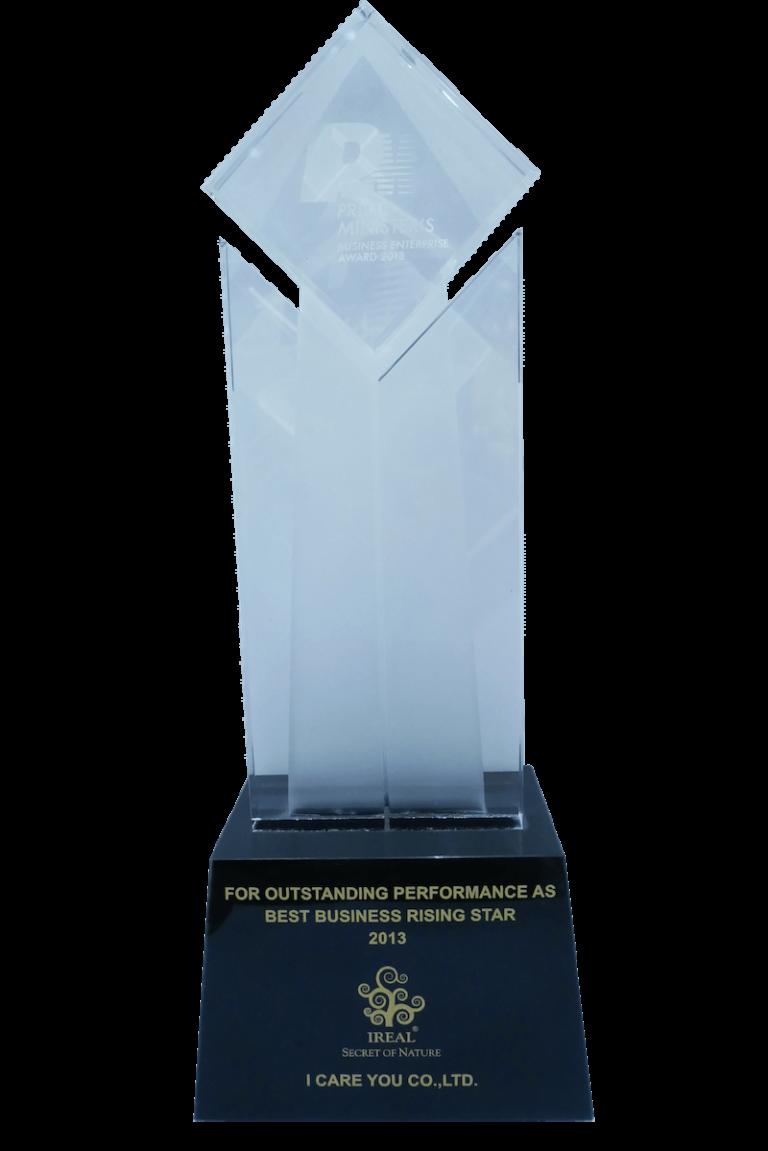 PM-award